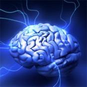 learn_epilepsy101_01